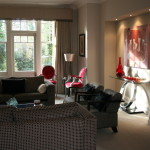 Shein living room